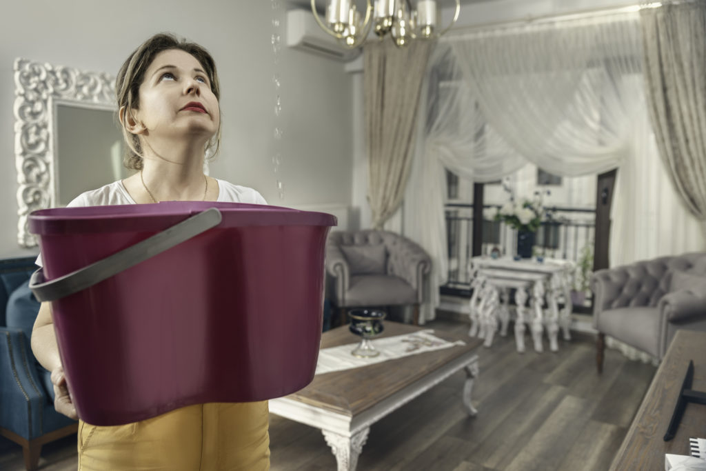 House Ceiling is Flowing - Woman Holding Bucket While Water Droplets Leak From Ceiling